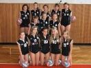 Volejbalové týmy 2008/2009