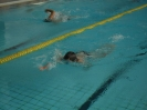 Plavecké závody